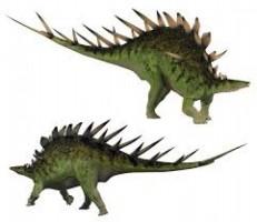 Spesies Baru Stegosaurus Ditemukan