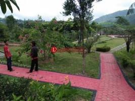 Taman Araceae Liwa Jadi Tempat Bersantai