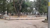Taman Merdeka Kota Metro Semakin Asri dan Teduh