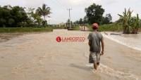 Tanggul di Sukaraja Kembali Jebol, Puluhan Hektare Sawah Terendam Banjir