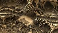 Temuan Fosil