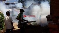 Temui 95 Kasus DBD, Dinkes Bandar Lampung akan Gencar Gelar Fogging