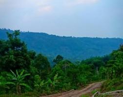 Tersimpan Berjuta Potensi di Desa Kalpataru
