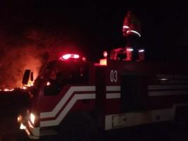 Tiga Hektare Lahan Perkebunan di Palas Terbakar