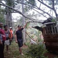 Tiga Kecamatan di Lampura Terdampak Angin Puting-beliung