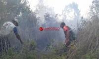 TNI dan BPBD Mesuji Berjibaku Padamkan Kebakaran Lahan Gambut
