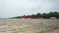 Tol Ruas Bakauheni-Indralaya Telan Investasi Rp42,99 Triliun