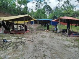 Tujuh Orang Suku Anak Dalam Jambi Singgah ke Liwa