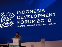 Wakil Bupati Erlina Hadiri Acara Indonesia Developent Forum 2018 di Jakarta