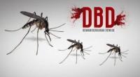 Warga Diimbau Lakukan Pemberantasan Sarang Nyamuk