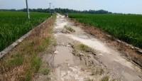 Warga Minta Perbaikan Jalan Margasari-Mandalasri