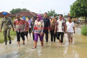 Winarti Tinjau Banjir Luapan Sungai Way Tuba