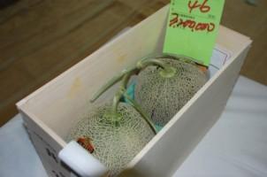 Wow! Melon Premium Jepang Terjual Lebih dari Rp400 Juta Sepasang