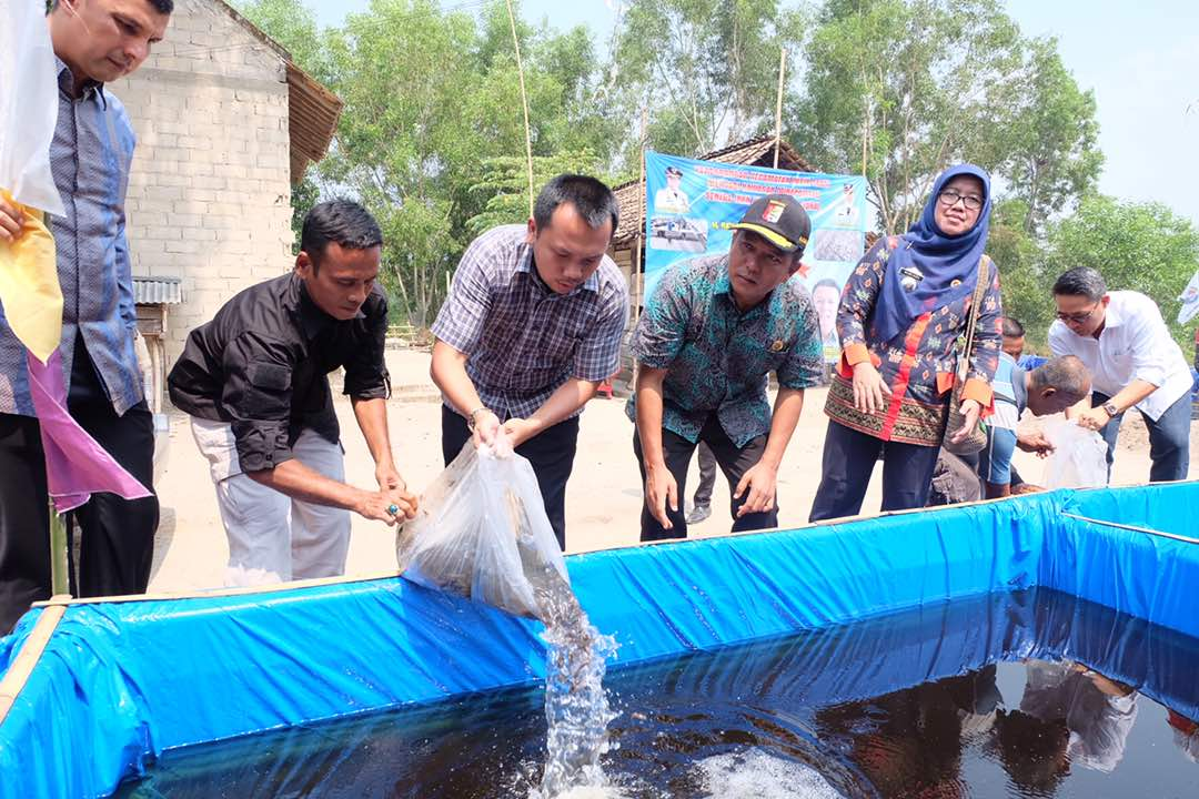 LAMPUNG POST | Pembudidaya Ikan Patin di Lampung Butuh Dukungan Permodalan
