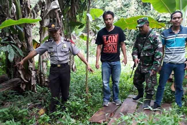 Aparat Amankan Papan Spanel dari Hutan Register