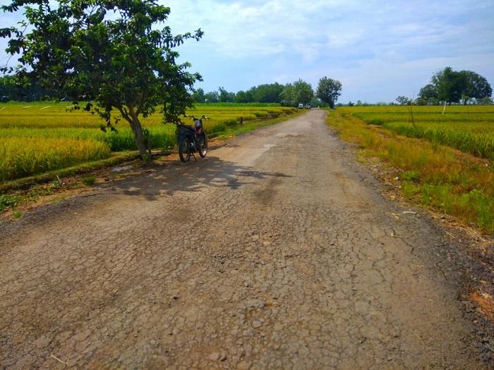 LAMPUNG POST | Kondisi Jalan Milik Provinsi dan Kabupaten Memprihatinkan
