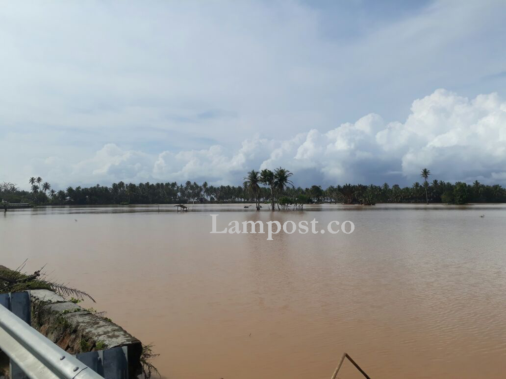 LAMPUNG POST   400 Hektare Persawahan di Pesisir Barat Terendam Banjir