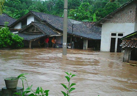 Way Sandaran Meluap, Puluhan Ternak Hanyut