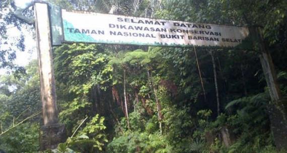 Perkebunan Tanpa Izin Penyebab Kerusakan TNBBS