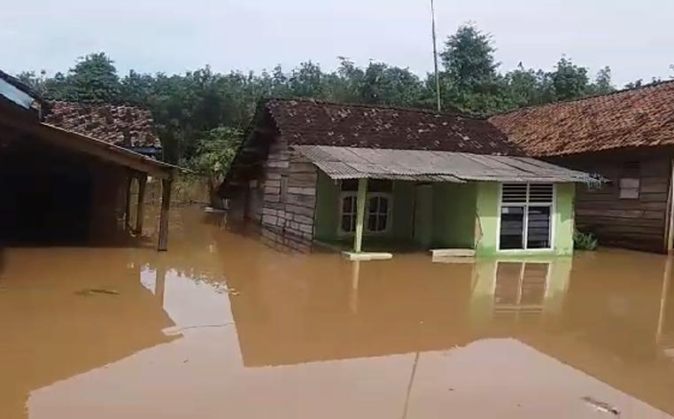Banjir Kepung 5 Kecamatan di Lampura, Akses Jalan Lumpuh