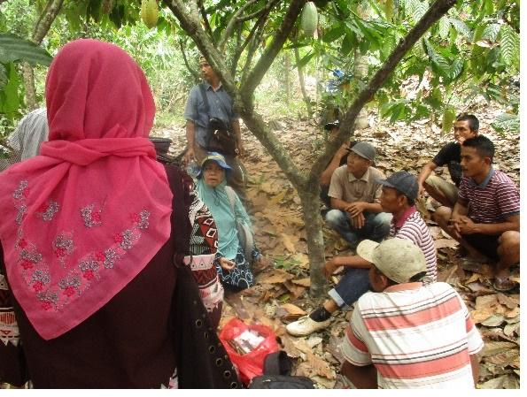 LAMPUNG POST | Faperta Unila Terapkan Sekolah Lapang Kakao