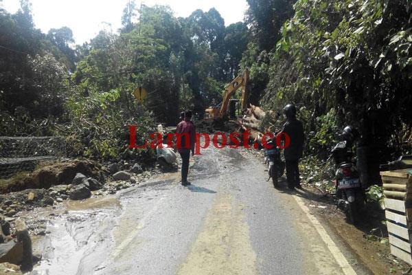 LAMPUNG POST | Batang Pohon Tumbang Tutupi Sebagian Badan Jalan Pal 7 Jalinbar Krui-Liwa