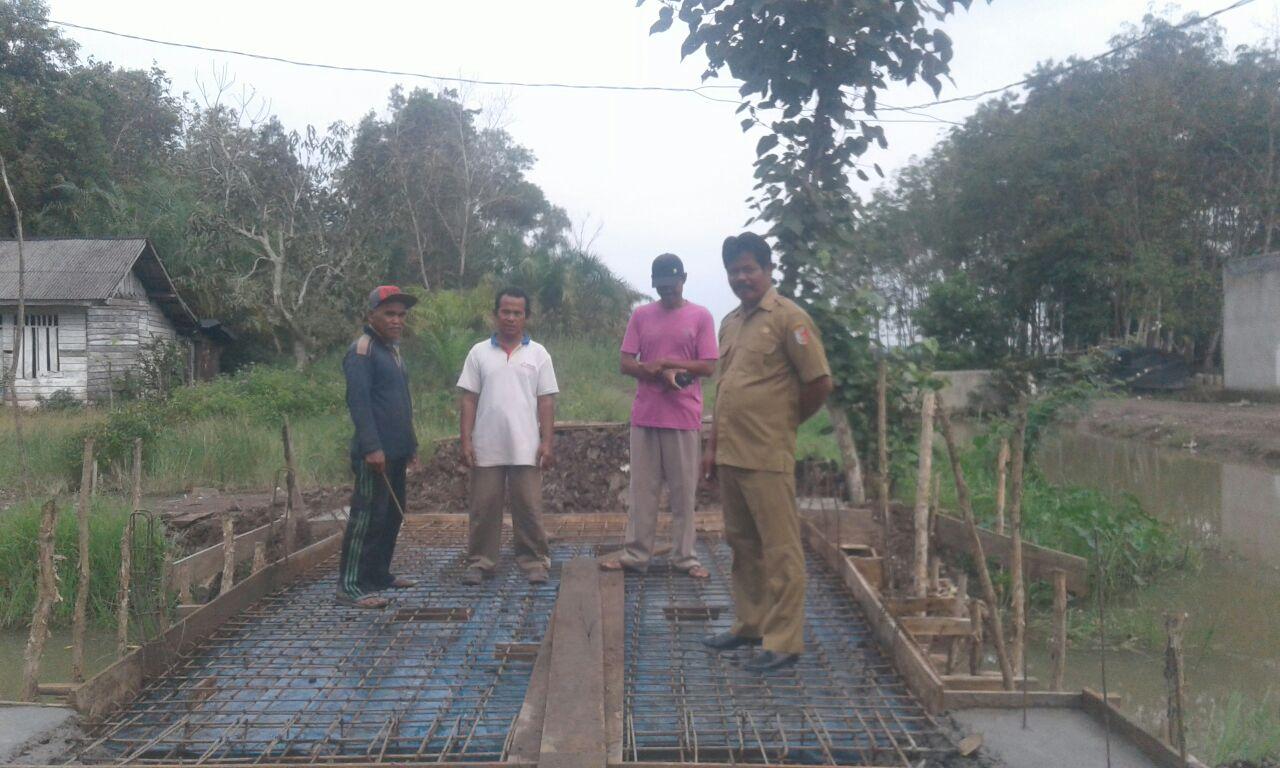 LAMPUNG POST | Desa Duta Yosomulyo Fokus Membangun Jalan dan Jembatan