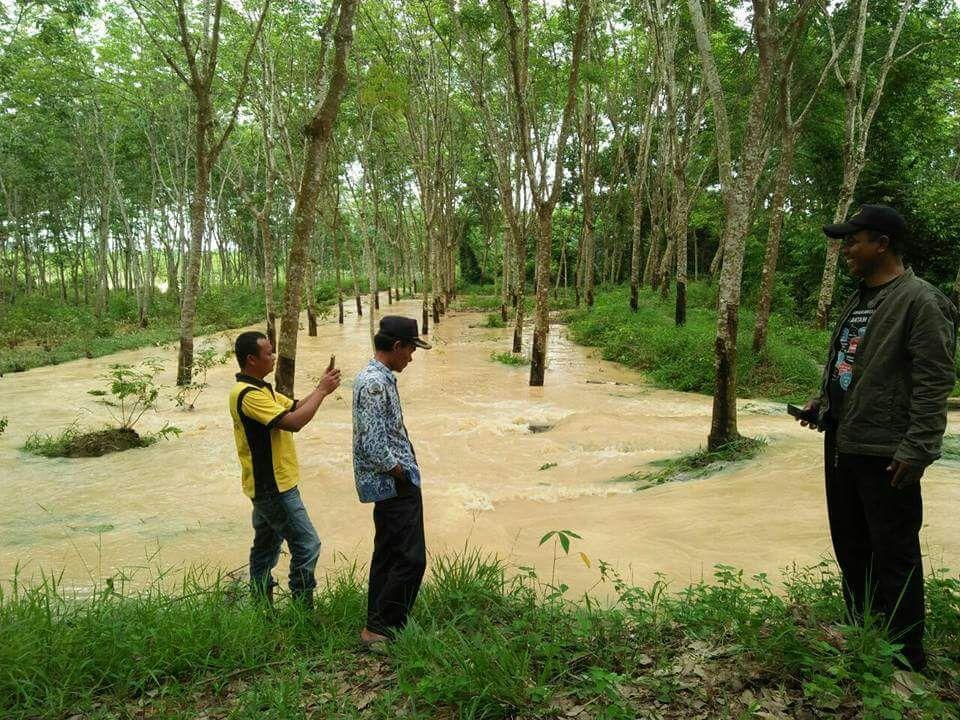 LAMPUNG POST   Hujan Deras, Sejumlah Wilayah di Mesuji Terendam