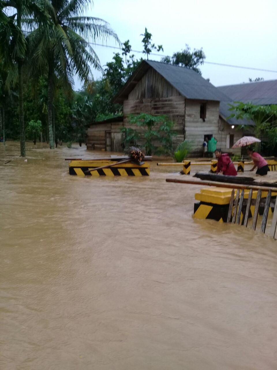 LAMPUNG POST | Banjir Rendam Ratusan Rumah Warga di Pesisir Barat