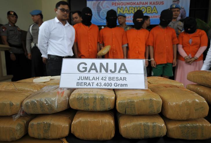 Pengiriman 1,3 Ton Ganja Asal Aceh Digagalkan di Bakauheni