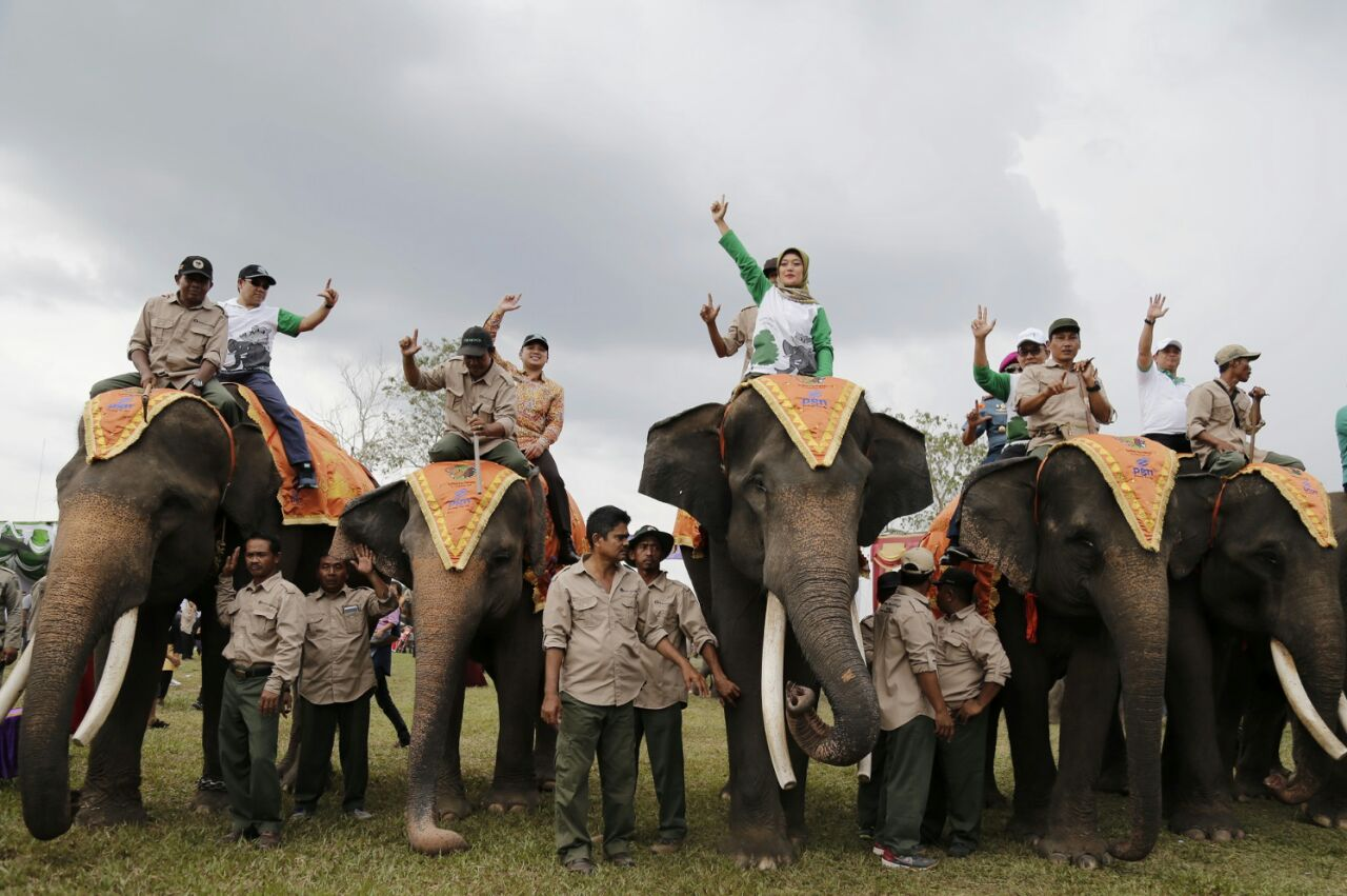 LAMPUNG POST | Festival Way Kambas Merupakan Ajang Promosi Pariwisata dan Pelestarian Satwa