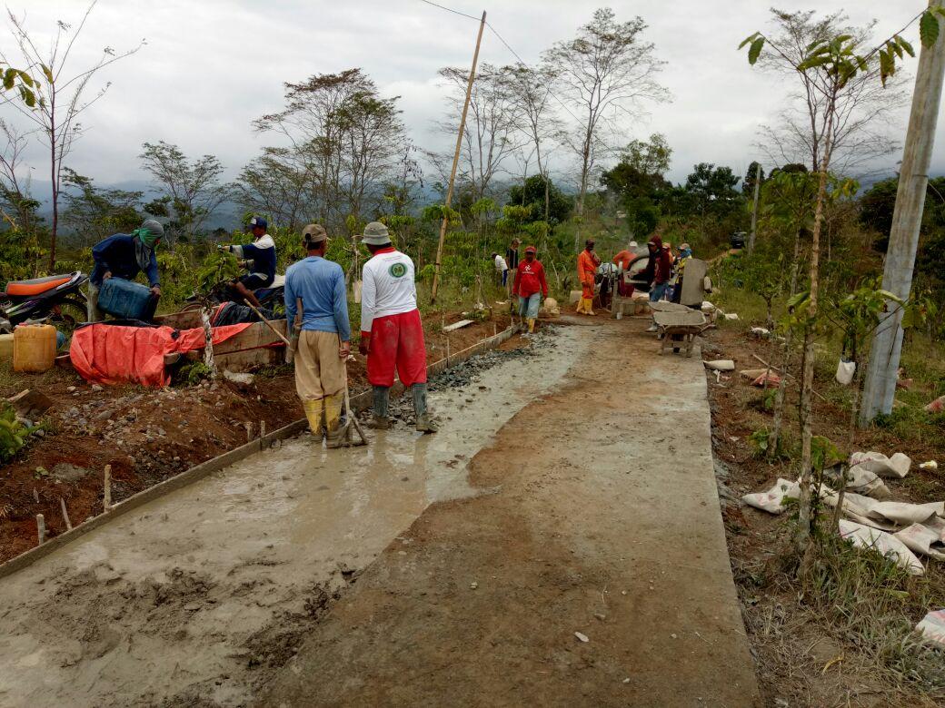 LAMPUNG POST | Pekon Petay Kayu Prioritaskan 3 Item Pembangunan