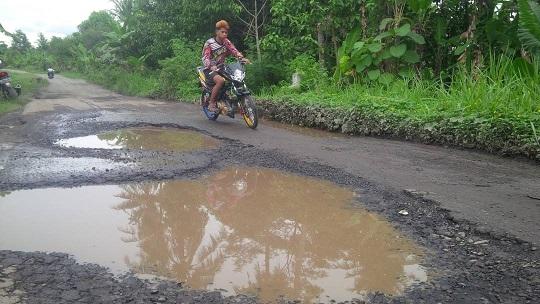 LAMPUNG POST | Jalan Poros Desa Kalirejo-Bumidaya Rusak Digenangi Air