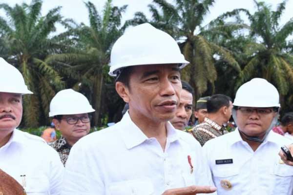 Jokowi Instruksikan Bulog Gelar OP dan Percepat Rastra
