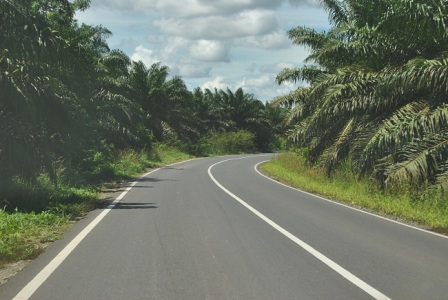 LAMPUNG POST | Pelebaran Jalan Lingkar Gunung Rajabasa Tingkatkan Kunjungan Wisatawan