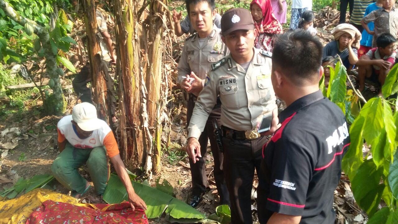 LAMPUNG POST | Desa Sungai Langka Digegerkan Penemuan Mayat Duda di Kebun Pisang