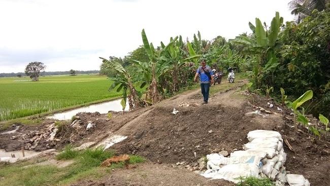 Pintu Air Rusak, Ratusan Hektare Sawah Terancam Banjir