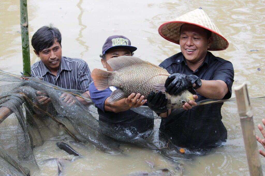 LAMPUNG POST | Mustafa Proyeksikan Lampung Tengah Jadi Sentra Ikan Air Tawar