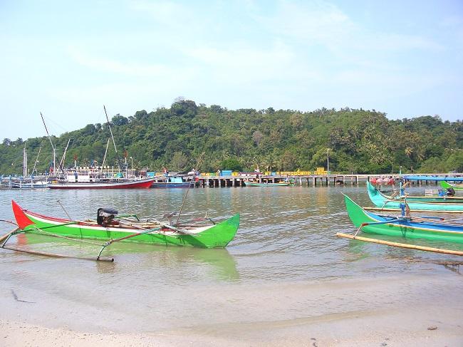 Menyelamatkan Pesisir Lampung
