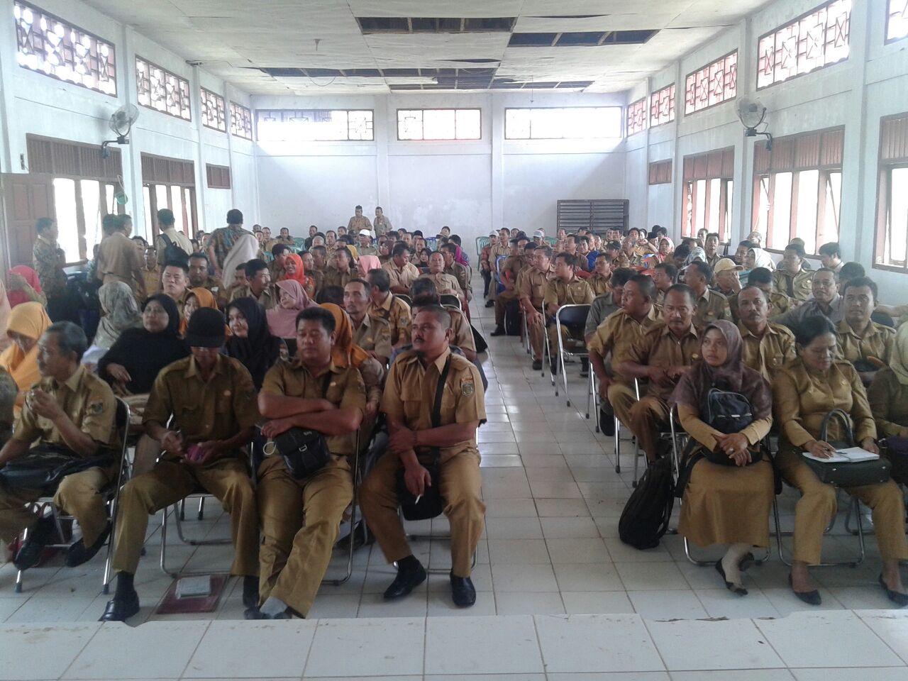 Dinas Pertanian Lamteng Siapkan Bibit untuk 500 Ha Sawah Puso