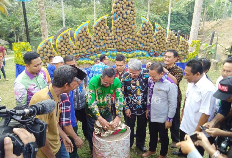 LAMPUNG POST   Pemprov Gelar Festival Durian di Tahura