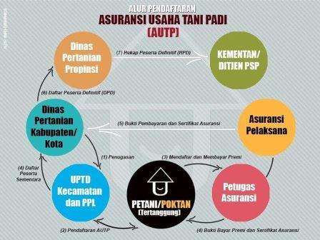 Antisipasi Puso, Petani Diimbau Daftar AUTP