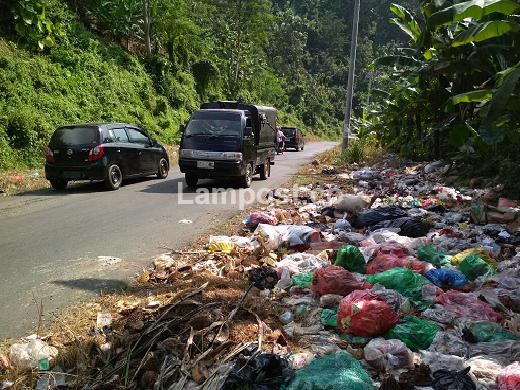 LAMPUNG POST | KUPT Pasar Padang Cermin Diharap Tangani Sampah