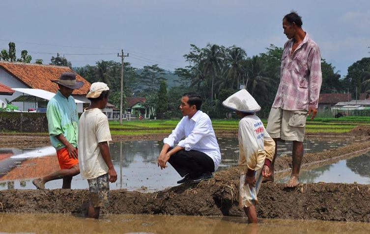 LAMPUNG POST | 67 Persen Rakyat Puas dengan Kinerja Jokowi
