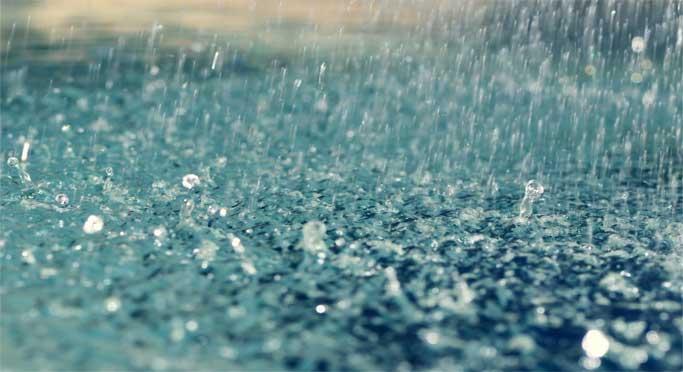 LAMPUNG POST | Meski Mulai Diguyur Hujan, Lahan Persawahan Warga Pesisir Barat Masih Aman dari Banjir