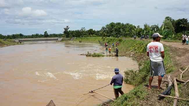 Selama Banjir, Petani Menjaring Ikan Buat Makan