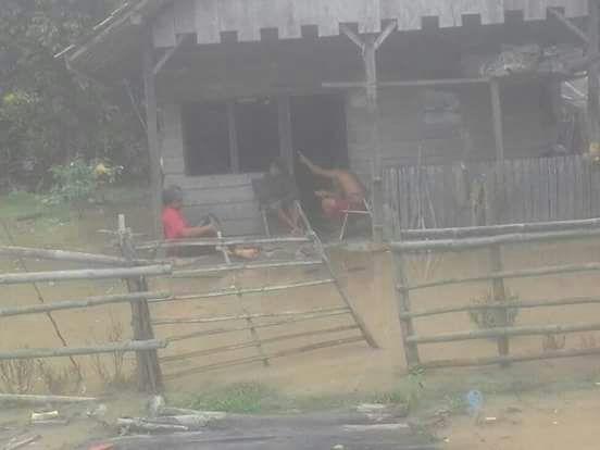 LAMPUNG POST | Banjir Luapan Sungai Way Umpu Meluas di Enam Kecamatan