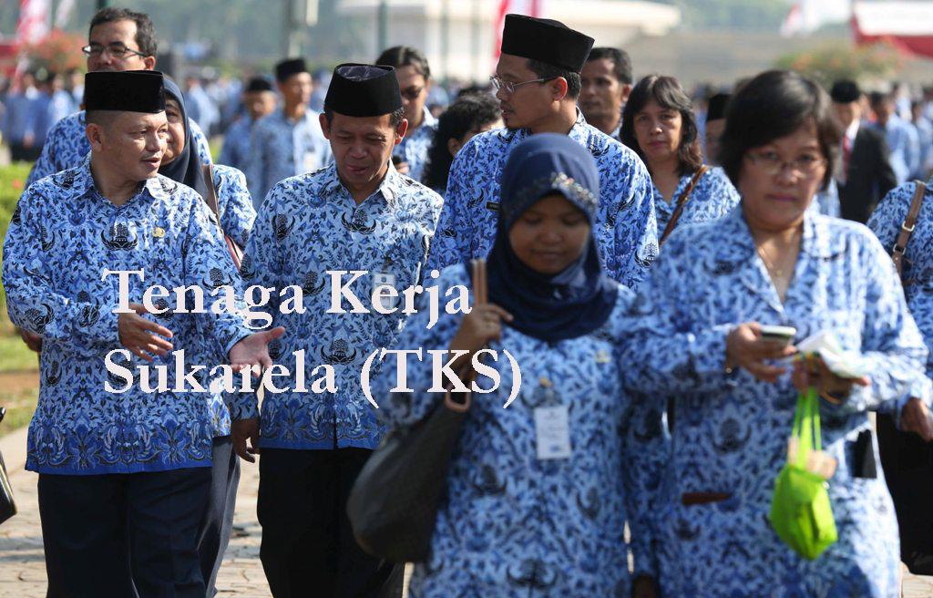 Pemkab Tanggamus Bayarkan Honorer untuk 4.830 TKS