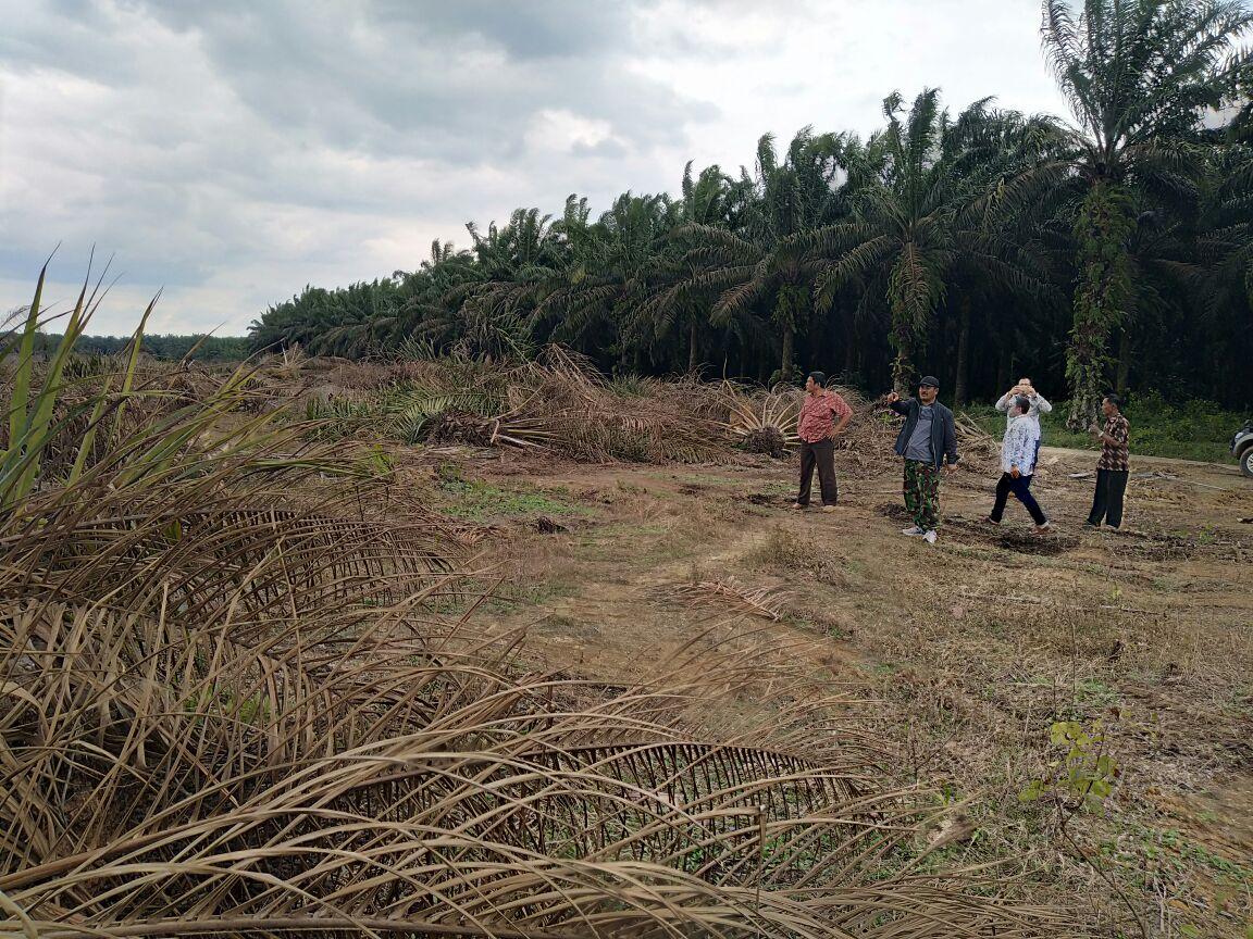 Pemkab Mesuji Akan Bangun Kompleks Olahraga dan Rumah Dinas Bupati