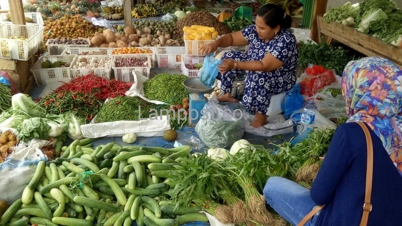 Harga Sayuran di Mesuji Merangkak Naik